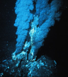 thermal vents